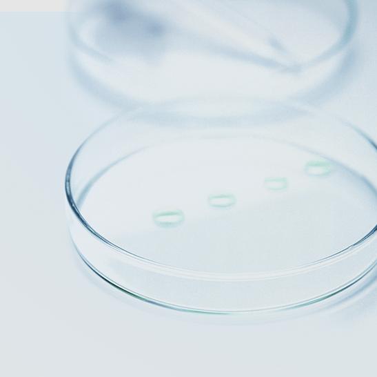 DMS tegen bacteriën